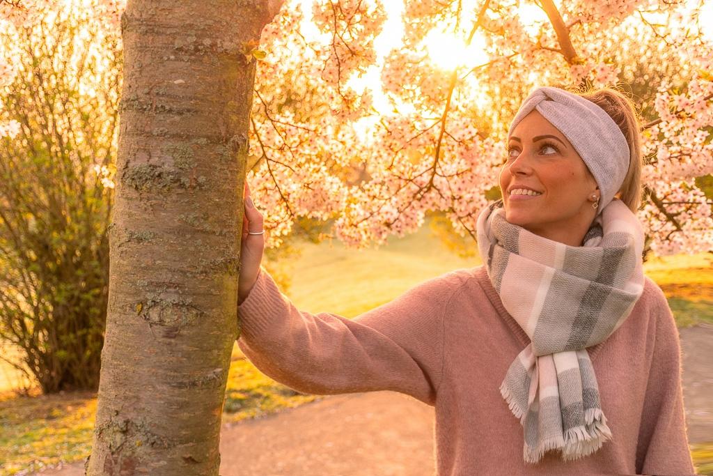 Kirschbaum in Deutschland, der im Frühling blüht