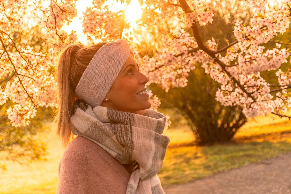 Frau schaut in blühende Kirschblüten hinauf