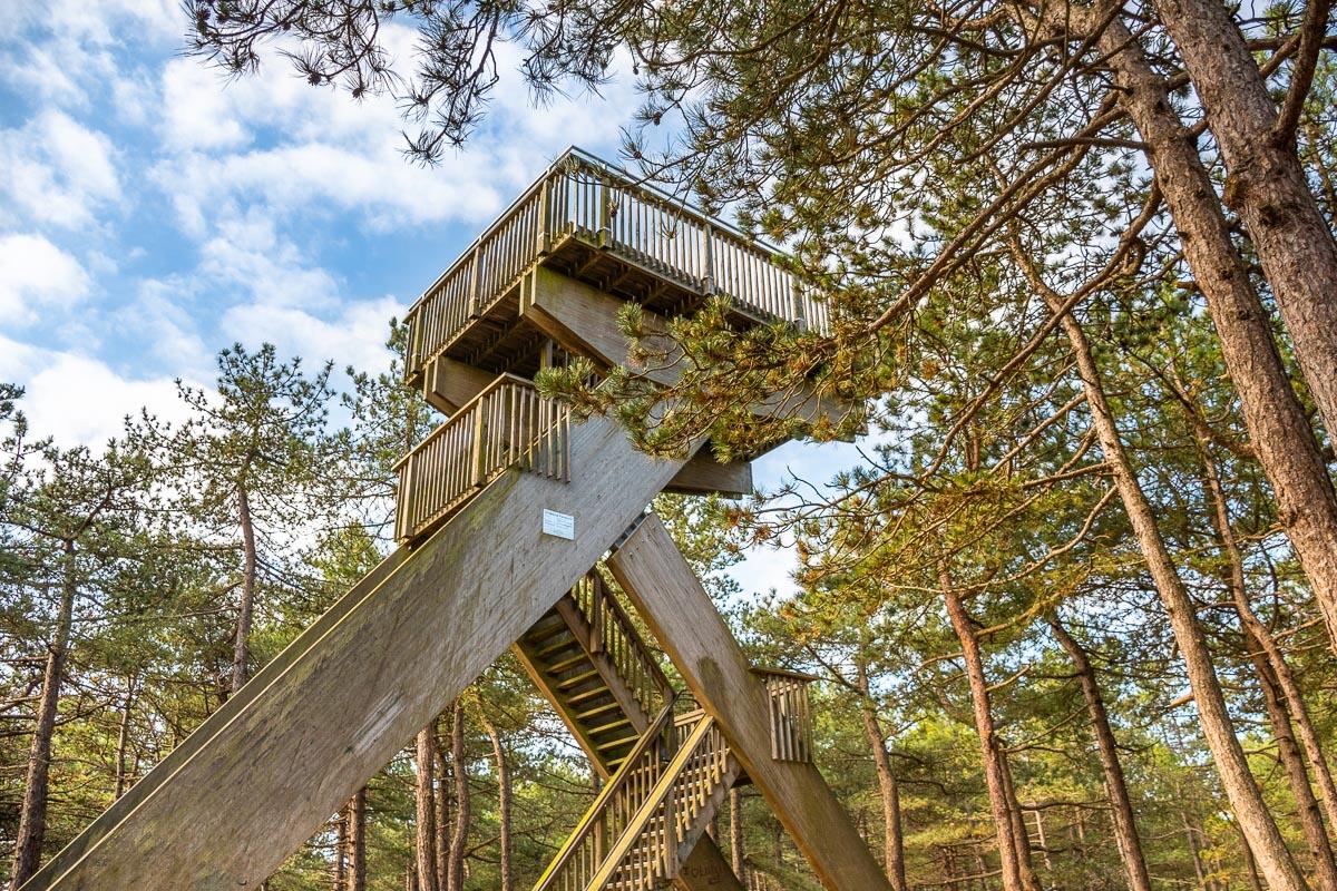 Aussichtsturm auf Texel im Wald