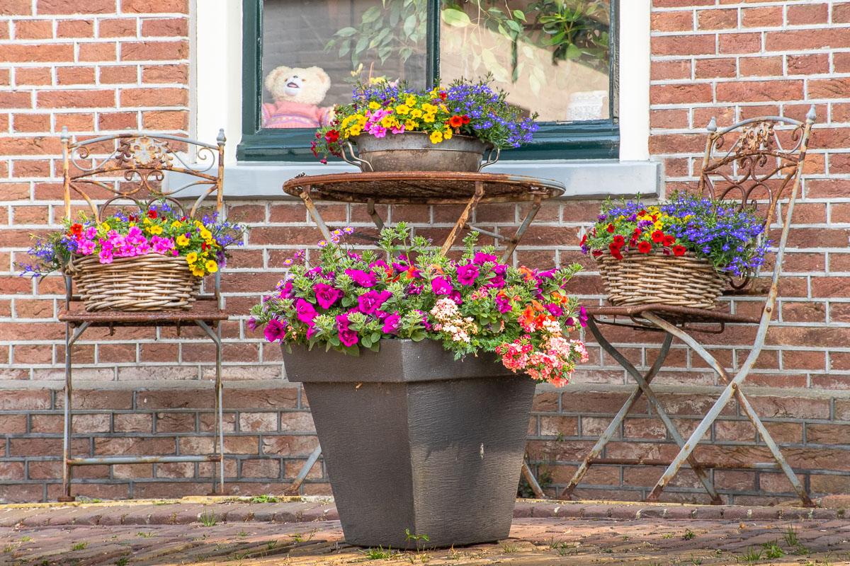 Bunte Blumen stehen vor einem schönen Haus auf Texel