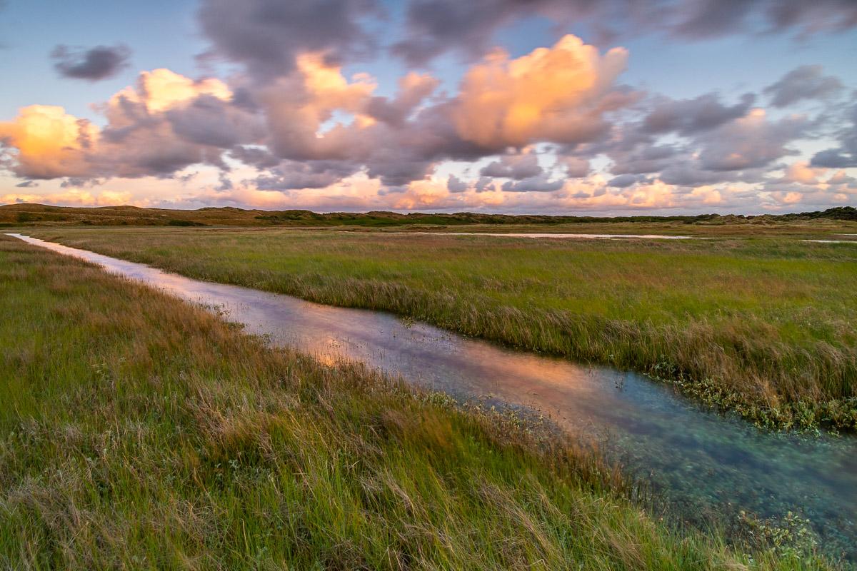 """Natur im """"De Slufter"""" auf Texel"""
