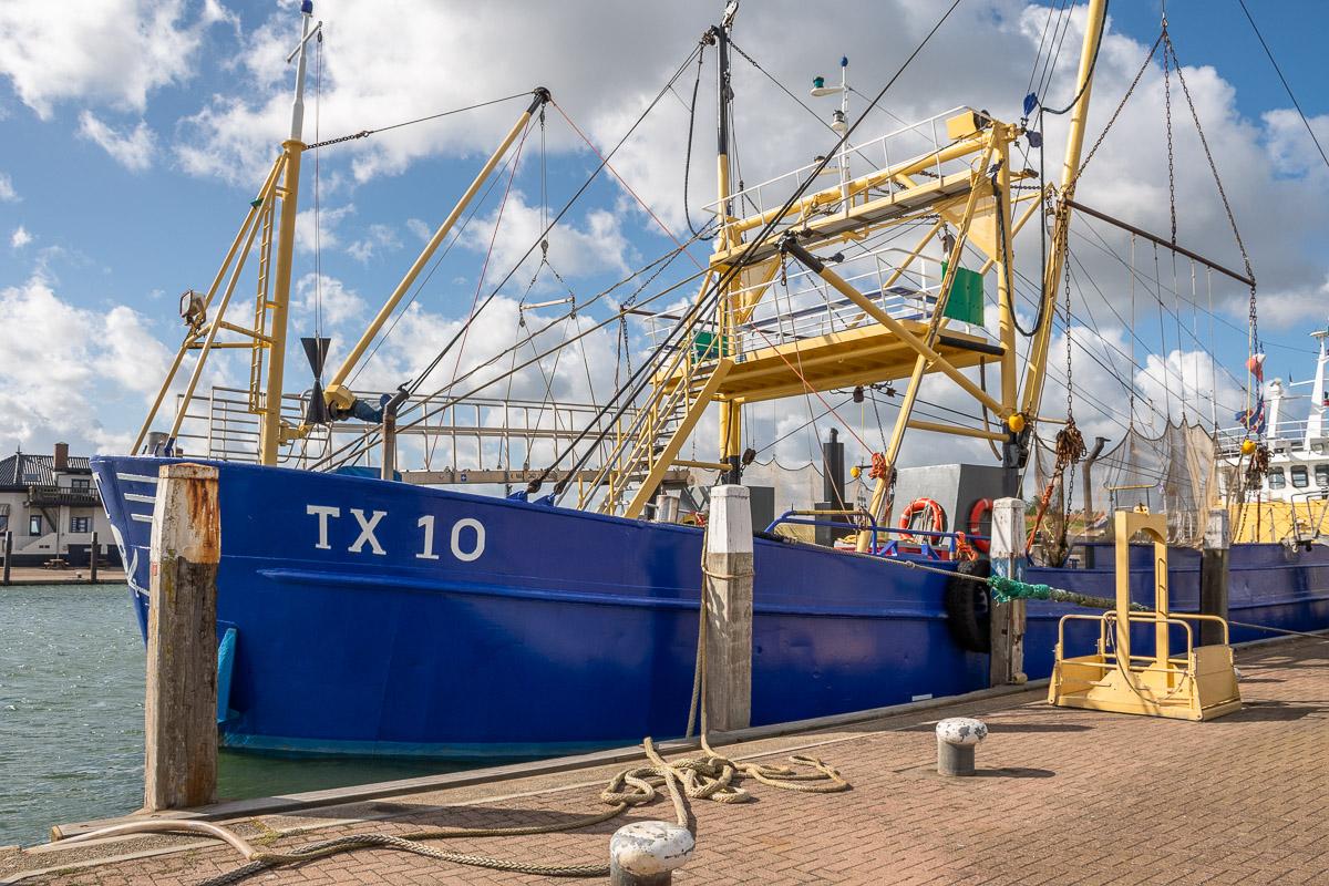 Ein blaues Schiff im Hafen von Oudeschild