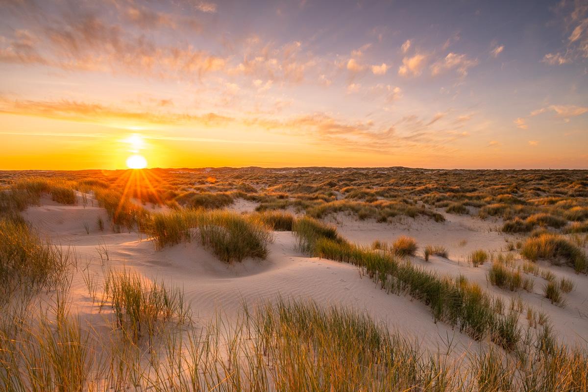 Sonnenuntergang in der Dünenlandschaft De Hors auf Texel