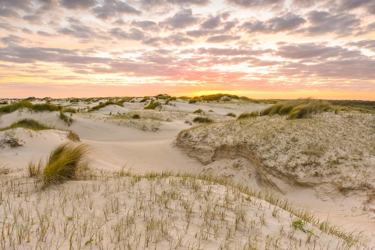 Dünenlandschaft auf Texel bei Sonnenuntergang