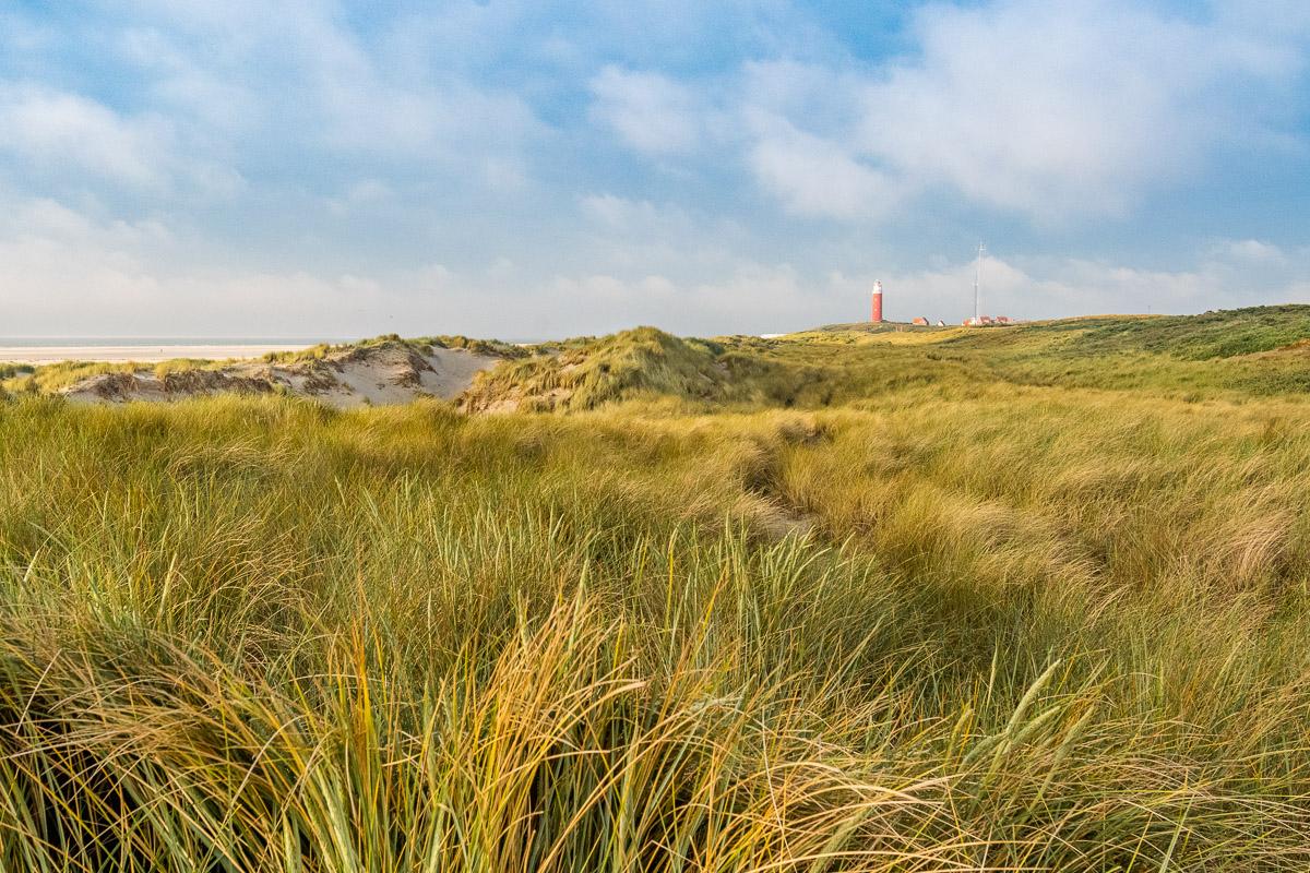 Blick auf den roten Leuchtturm von Texel
