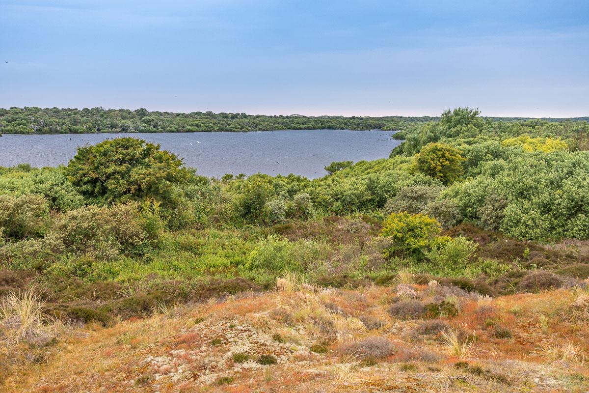 See mit viel Natur im Süden von Texel