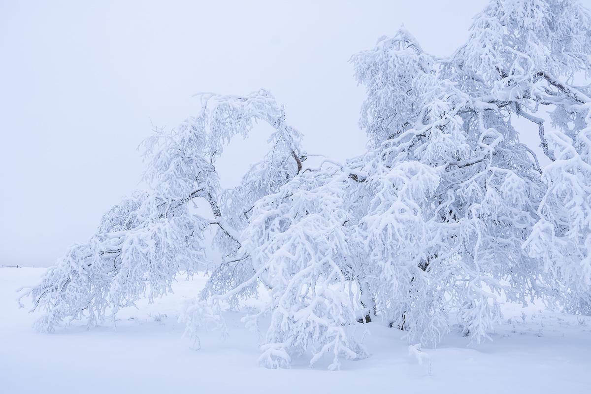 Viel Schnee im Sauerland