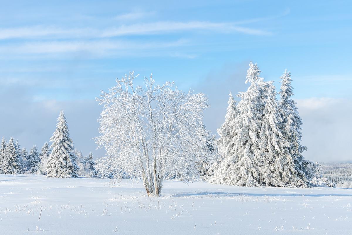 Schneelandschaft mit blauem Himmel