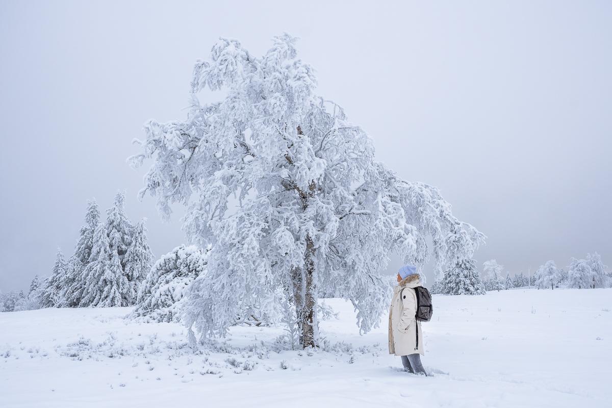 Frau steht vor einem verschneiten Baum