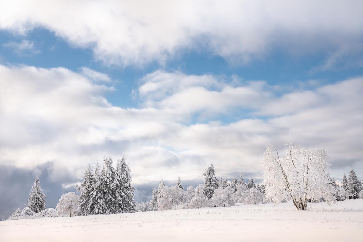 Schneelandschaft in NRW