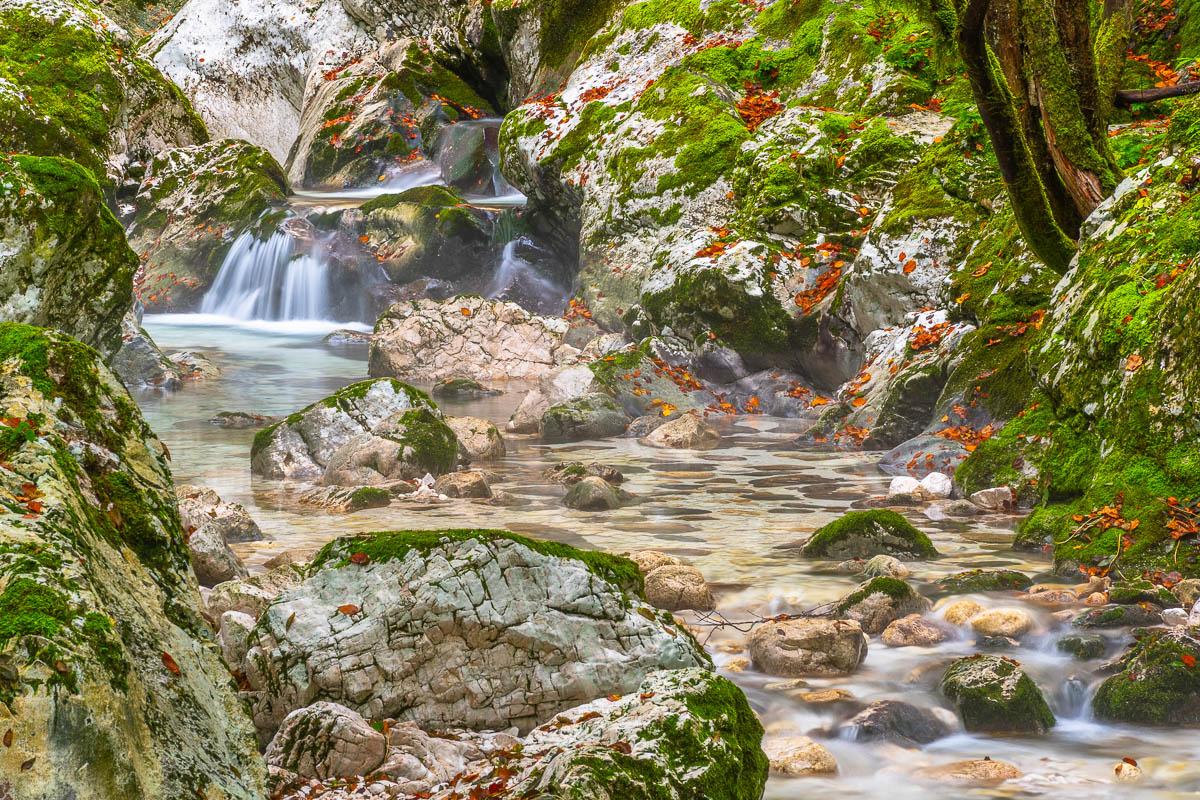 Sunik Wasserhain